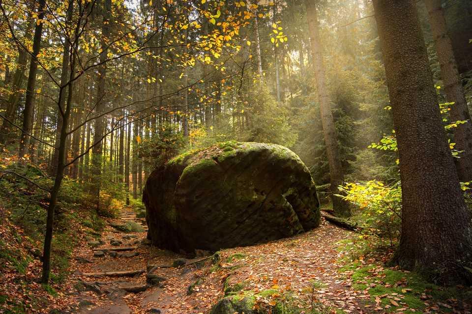 Der Malerweg ist eine der bekanntesten Wanderrouten in Sachsen und führt durch das ganze Gebirge.