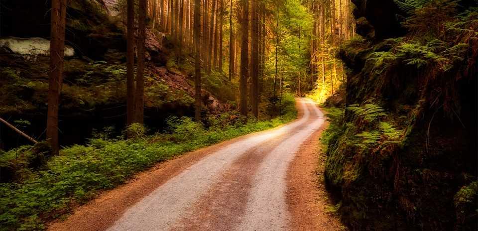 Wandern auf dem Malerweg erfordert zwar eine grundlegende Kondition ist aber auf vielen Strecken perfekt für eine gemütliche Wanderung geeignet.
